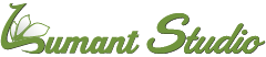 Lumant Studio Logo